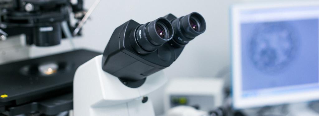 Предимплантационное тестирование эмбриона (ПГД)