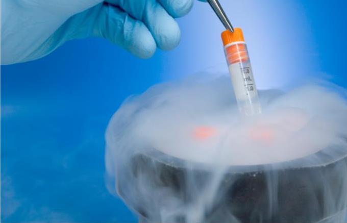 Криоконсервация эмбрионов, яйцеклеток и спермы